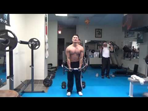 Triceps Biceps and Military Press Training