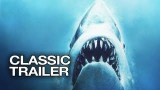 س&ج| هل تستحق أسماك القرش لقب