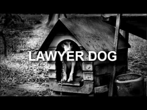 Lawyer Dog Memes Lawyer Dog