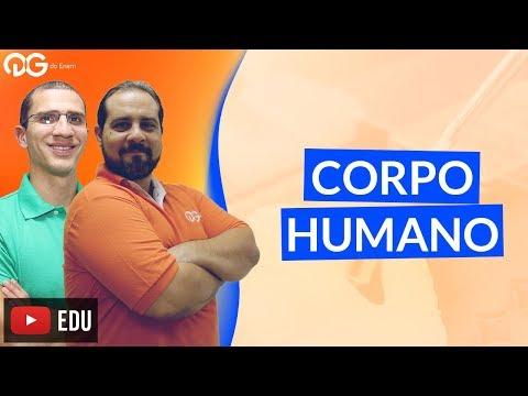 Enem em Dose Dupla: Corpo Humano (Parte 1)