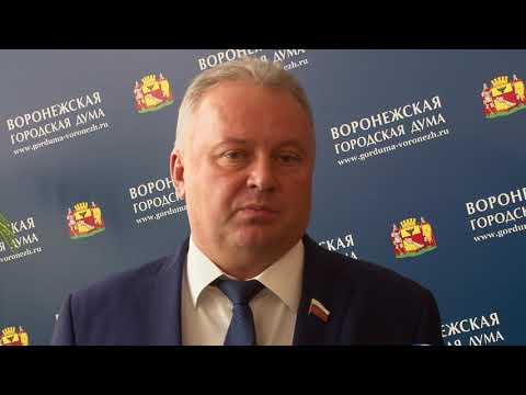 Презентация проекта маршрутной сети Воронежа