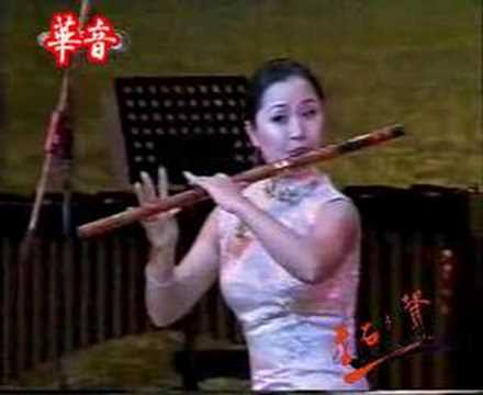 Chinese bamboo flute:鹧鸪飛 / 竹笛:陳悅