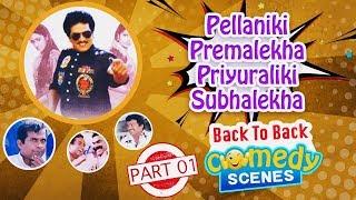 Rajendra Prasad's Pellaniki Premalekha Priyuraliki Subhalekha Comedy Scenes Back To Back Part 01 - RAJSHRITELUGU