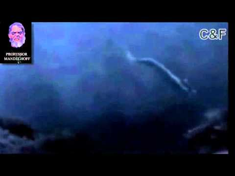 Real mermaid found incredible footage