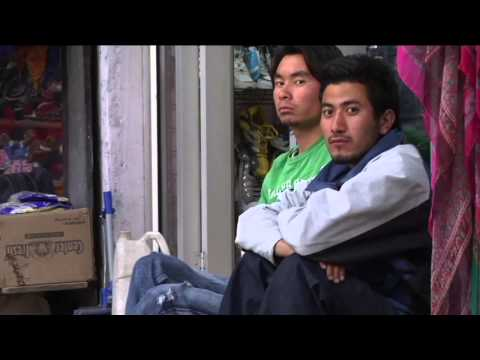 Schooling the World 2010 documentary movie, default video feature image, click play to watch stream online