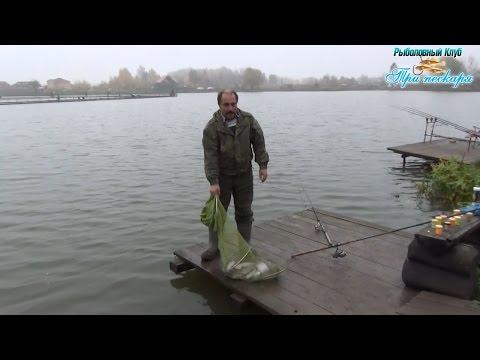 платная рыбалка в киржаче