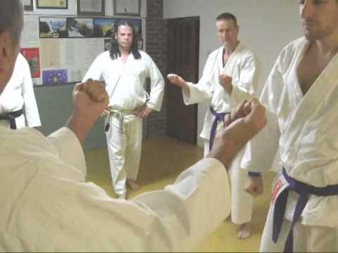 TOM HILLS DOJO - Goju Karate - Sanchin Bunkai Thumb strikes