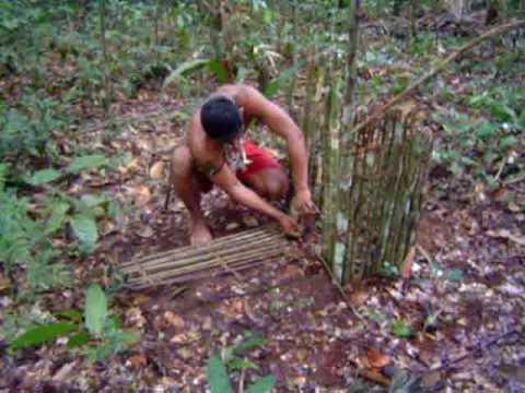 Amazônia - Armadilha indígena - 1