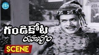 Gandikota Rahasyam Movie Scenes - Raja Babu Comedy || NTR ||  Jayalalitha - IDREAMMOVIES