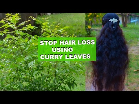 How To Regrow Hair Naturally  Fast Using Curry Leaves