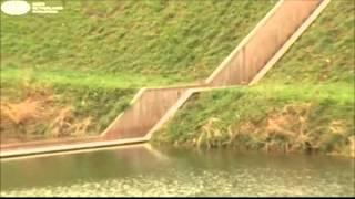 جسر النبي موسى يشق البحر في هولندا
