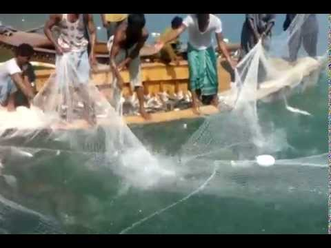 Fun 2 Watch Catching Fish with Big Nets