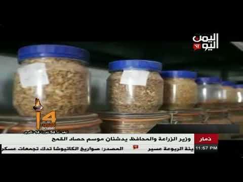 وزير الزراعة ومحافظ ذمار يدشنان موسم حصاد القمح 18 - 10 - 2017