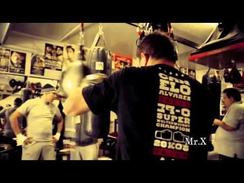 Canelo Alvarez Highlights ( Young Phenom )