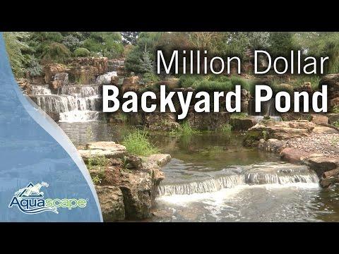 What a million dollar backyard pond looks like videos for Garden pond reddit