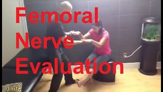 femoral nerve evaluation - youtube, Muscles