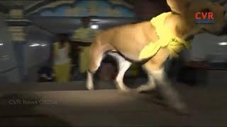 తిరుమలలో భక్త శునకం హల్ చల్...| Devotion Dog Hulchul in Tirumala | CVR News - CVRNEWSOFFICIAL