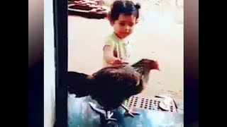 Watch: Cute girl asks her hen to wear slippers in viral video - TIMESOFINDIACHANNEL