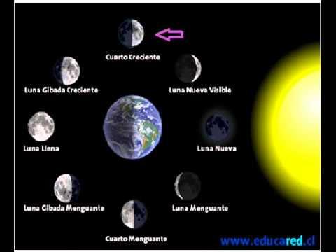Cuántos y cuáles son los movimientos de la Tierra como