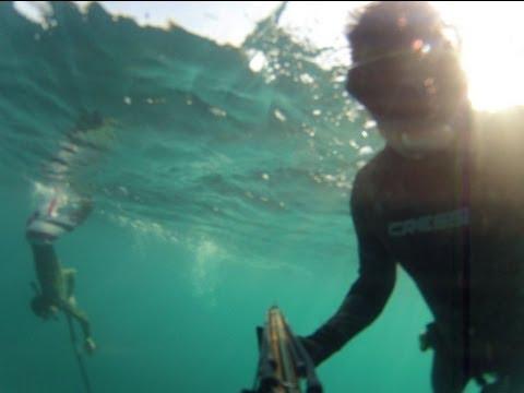 Spearfishing Shanok03