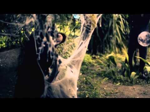 Il Sogno Di Ilse - Il Giardino Selvaggio (Official Videoclip)
