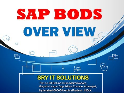 SAP BODS ONLINE TRAINING | BODS PROJECT SUPPORT | BODS DEMO | SAP BODS OVER VIEW