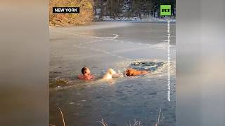 Hooman to the rescue: Man & his pooch save 2 dogs from drowning in ice cold water - RUSSIATODAY