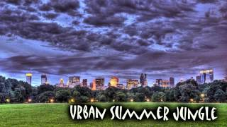 Royalty Free Urban Summer Jungle:Urban Summer Jungle