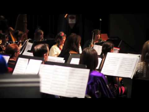 HARRY POTTER AND THE CHAMBER OF SECRETS performed by Austin's own Cinematic Symphony