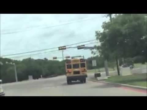 Bus 205 1