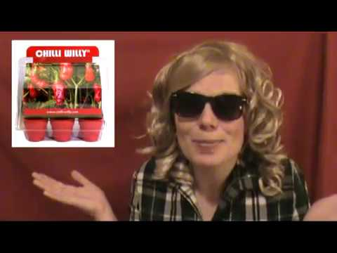 Grow Chilli Willies - Funny Gift, Secret Santa Presents, Novelty Gift Ideas, Novelty Gifts