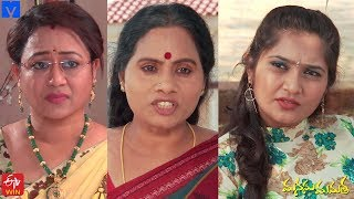 Manasu Mamata Serial Promo - 17th March 2020 - Manasu Mamata Telugu Serial - MALLEMALATV