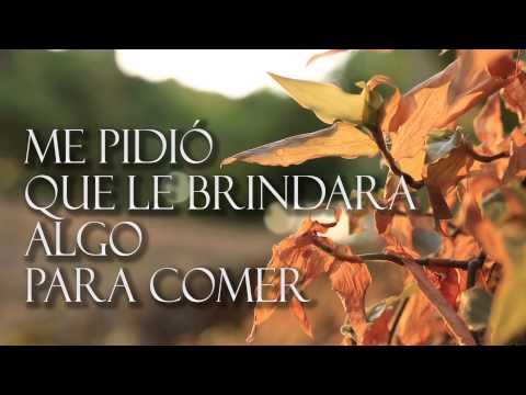 Mystical VideoKaraoke - Reggae Es Amor