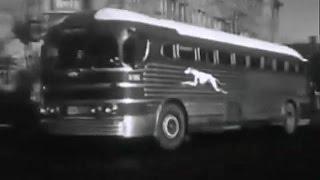 Американский городок 50-х