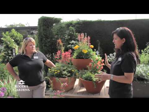 Flowering Summer Bowls with Lisa Bauchiero & Suzanne Hetrick