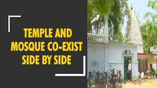 Communal harmony: A temple and mosque co-exist together in Faizabad - ZEENEWS