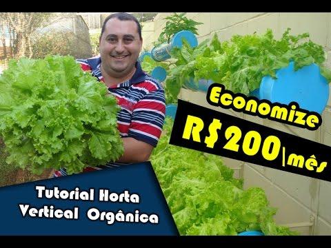 Horta Vertical Orgânica