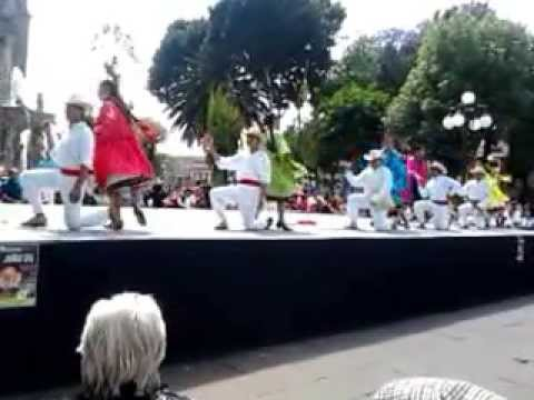Sones Mazahuas Edo. México.