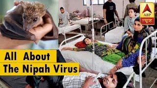 All you need to know about the Nipah virus - ABPNEWSTV