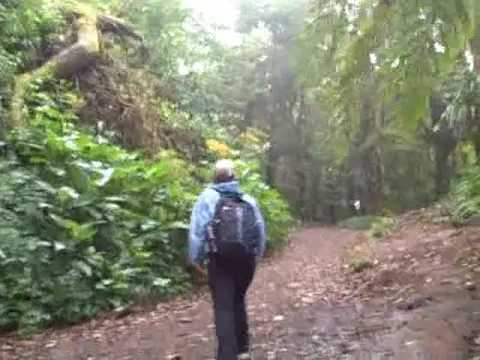 Costa Rivca - Monteverde