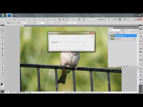 Photoshop cs5 Tutorial-Background black and white.