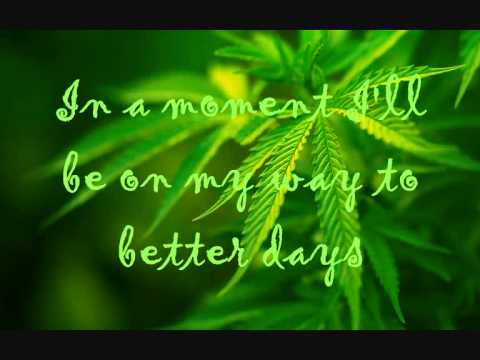 Rebelution - Feeling Alright with lyrics on the screen
