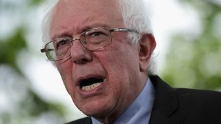 Bernie Sanders Gives Hillary Clinton a Run For Her Money - BLOOMBERG