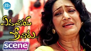 Evandoy Sreevaru  Movie - Sunil, Srikanth, Rama Prabha Funny Scene - IDREAMMOVIES