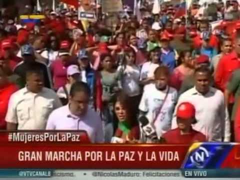 Marcha de las Mujeres con Maduro este 22 de febrero de 2014 (fragmento)