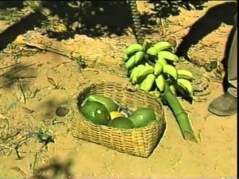 Sr. Zé Bilico no Globo Rural