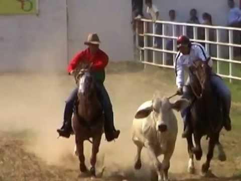 JOROPO LLANO Y COLEO 2013 PARTE 2/7