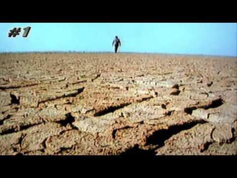 O Asno Selvagem do Deserto Indiano - Índia Selvagem Parte 2/3