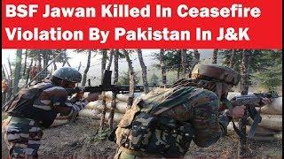 Soldier, BSF Jawan Killed In Ceasefire Violation By Pakistan In J&K - NEWSXLIVE