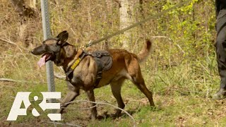 Live PD: Best of K9 Officers | A&E - AETV
